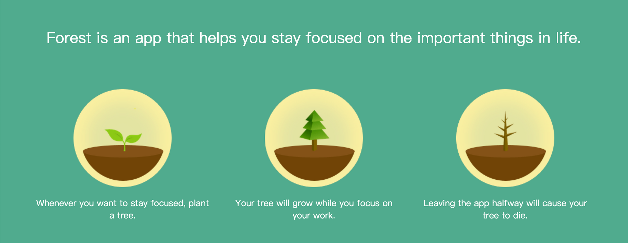 """Forest"" app helps your productivity by growing a tree every time you stay focused enough"