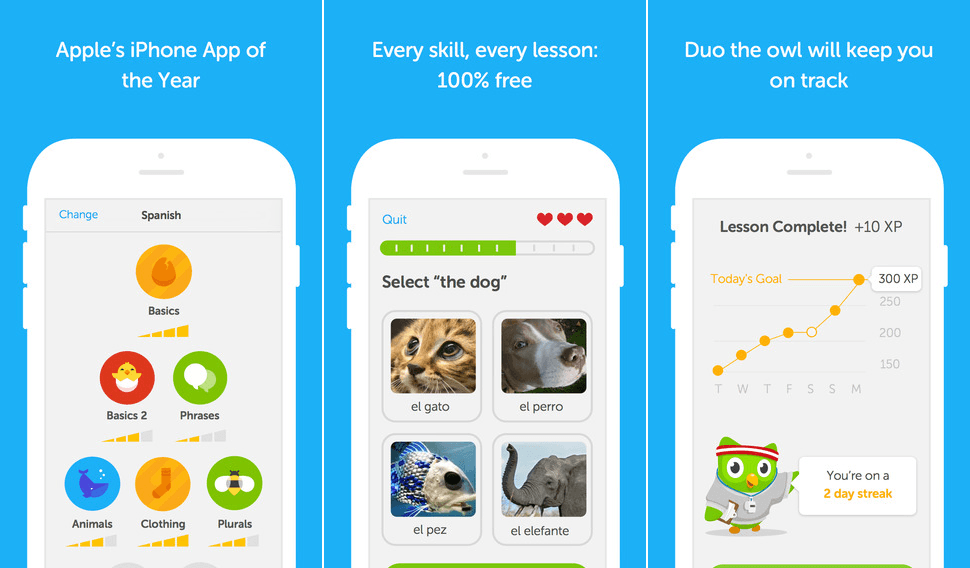 Duolinguo - a language learning app with gamified elements